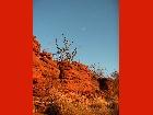 Bild Outbacktour11.jpg anzeigen.